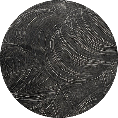 1B20 - Off Black with 20% Gray Hair