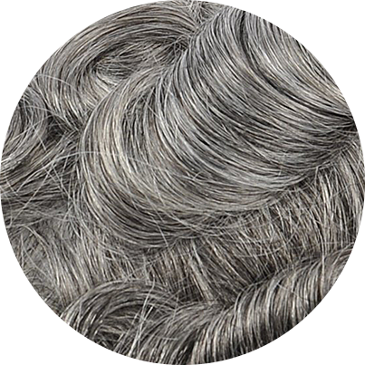 1B65 - Off Black with 65% Gray Hair