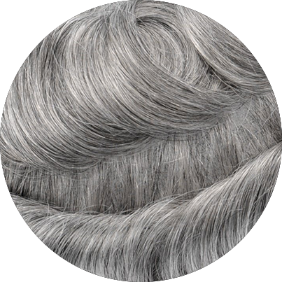 1B80 - Off Black with 80% Gray Hair