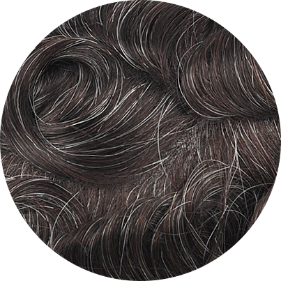 220 - Darkest Brown with 20% Gray Hair