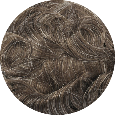 520 - Cool Toned Brown with 20% Gray Hair