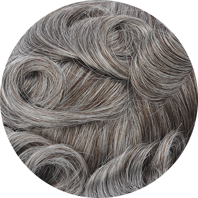 350 - Dark Brown with 50% Gray Hair