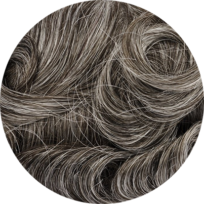 340 - Dark Brown with 40% Gray Hair