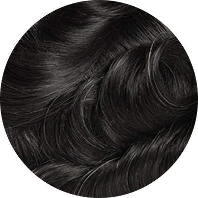 1B05 - Off Black with 5% Gray Hair